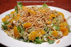 lrg-alejandros-Chicken_Noodle_Salad